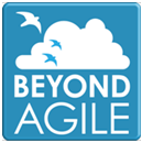 Beyond Agile group
