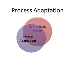 Process adaptation.